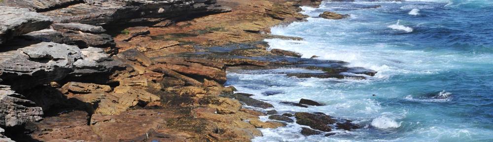 Keller Williams Realty Coral Springs